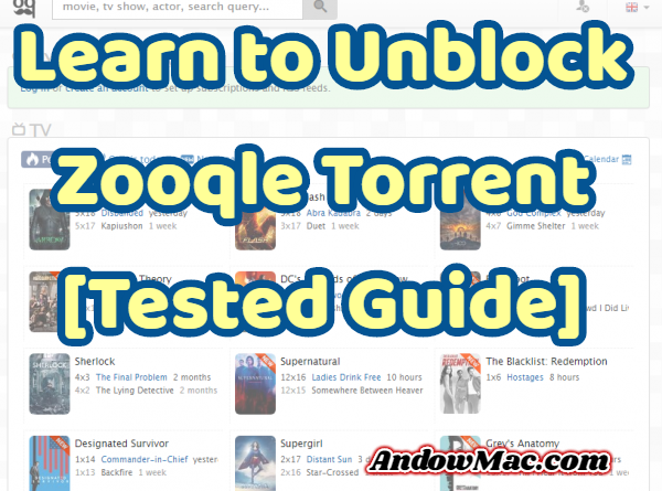 Learn to Unblock Zooqle Torrent [Tested Guide]