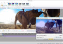 How to Create a Stunning Promo with VSDC Free Video Editor