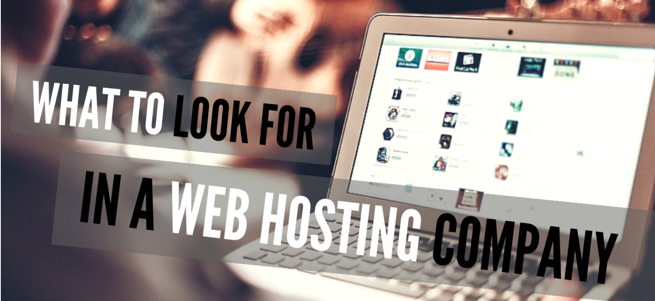 how-to-choose-web-hosting