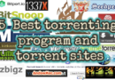 5 Best torrenting program and torrent sites in 2019