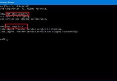 How to Fix 0x8024a105 Windows 10 Error During Updates Installation
