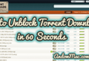 Unblock Torrent Downloads in 60 Seconds | Proxies & Mirrors (100% Working)