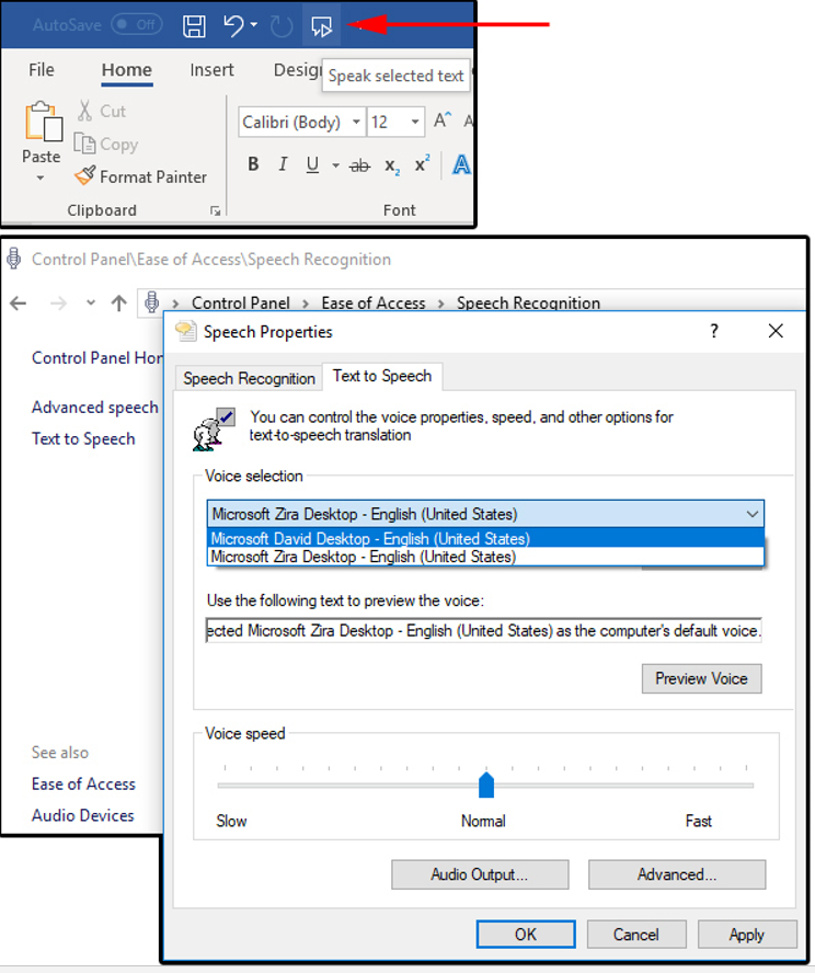 How to Use the Speak and Read Aloud Commands in Microsoft Word to Make it Read to You? (4)